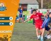Highlights: FC BEER - vs - FC SDL | Vòng 3 - CUP MẠNH LINH 2020