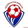 Giải bóng đá học đường Nguyễn Xuân Nguyên