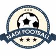 Giải bóng đá Nam Định tại Hà Nội - Season 2 / 2021