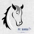 FC 2002