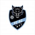 FC 1982