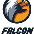 Falcon Game Studio