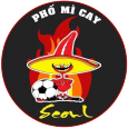 MÌ CAY SEOUL FC